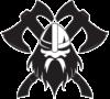 Viking Team – Szkoła sportów walki